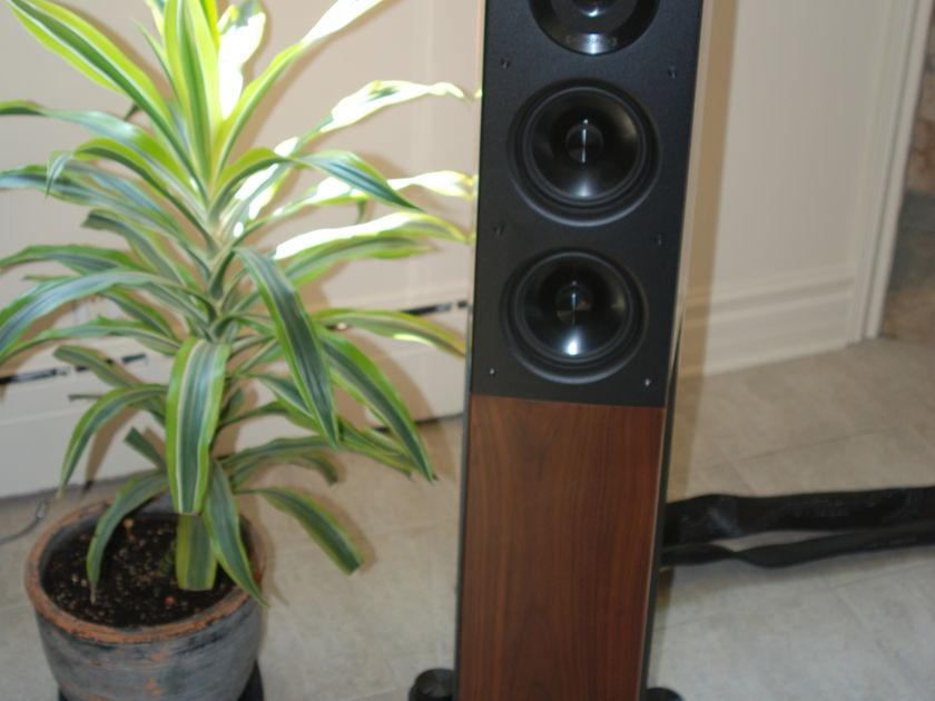 Audio Physic Avantera plus + Special Edition