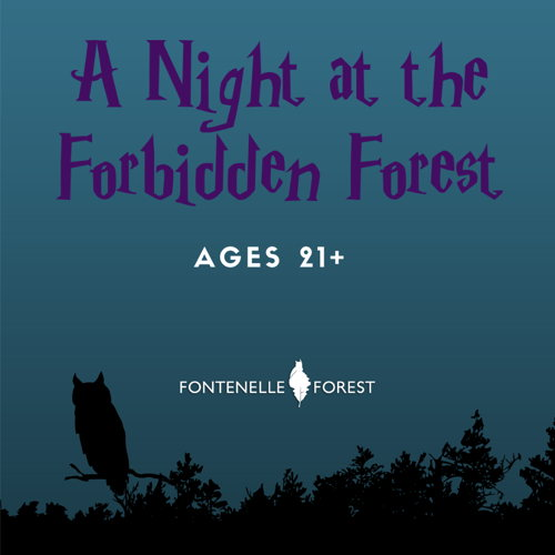 Picture of Unleash your inner child and immerse yourself in the magic of Fontenelle Forest!