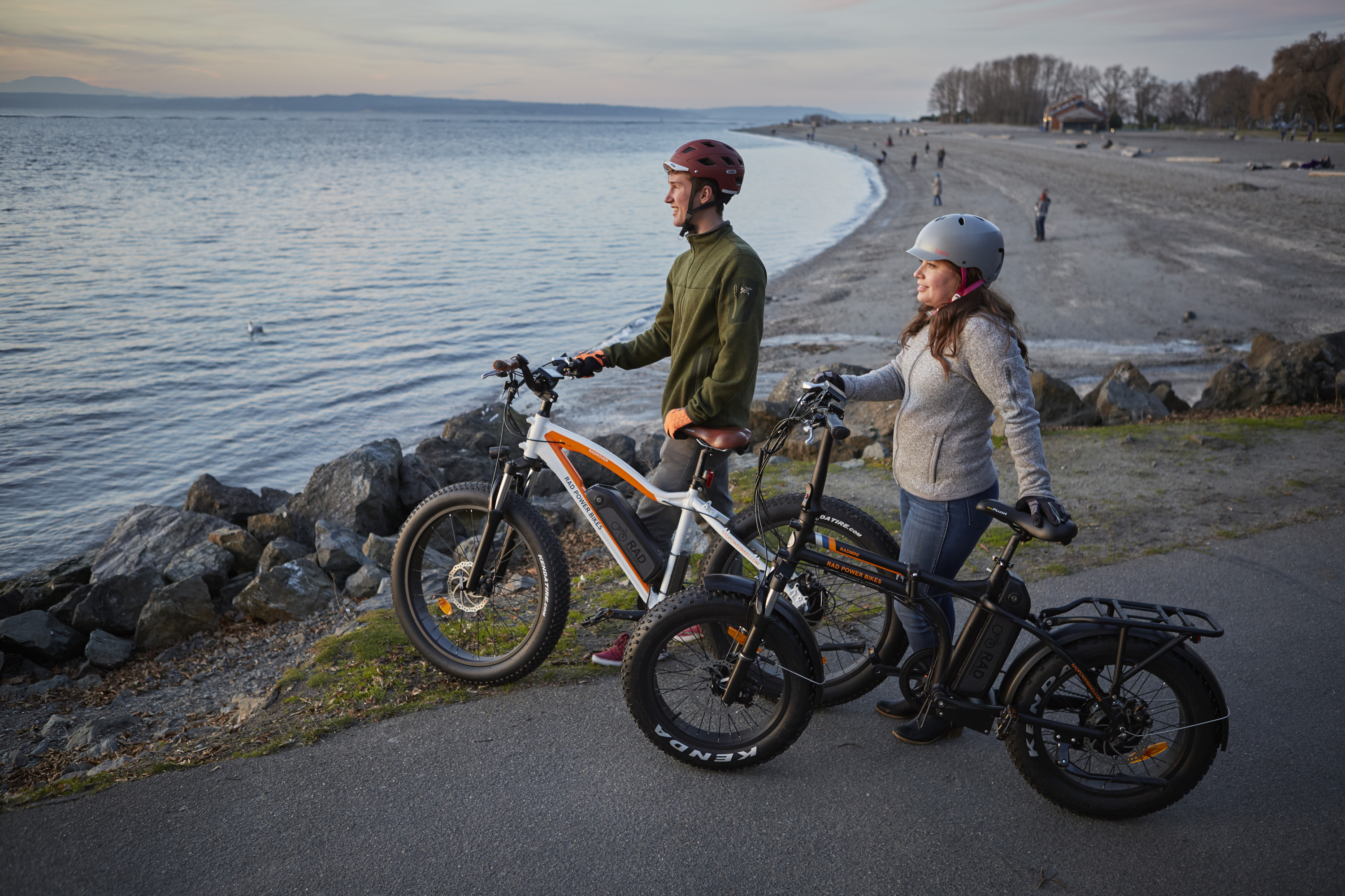Rad Power Bikes Electric Fat Bikes And Electric Cargo Bikes - What is car invoice price online bike store