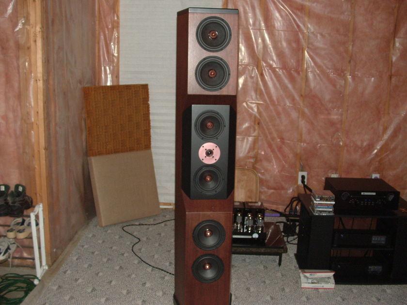 Tyler Acoustics D1 Floorstanders