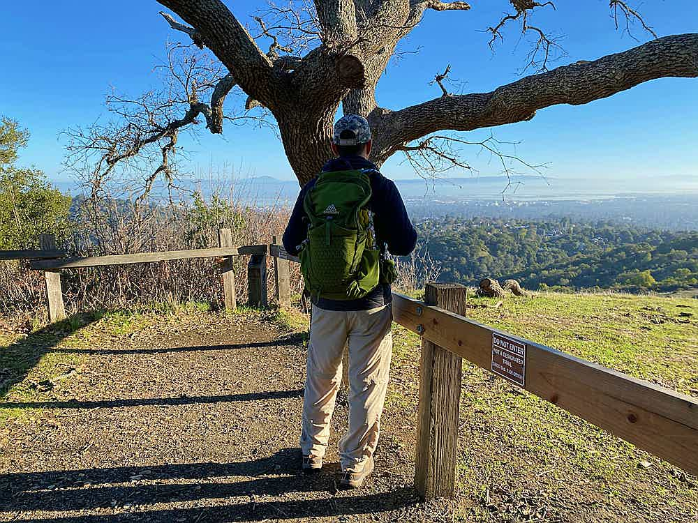 Hiker taking in the view from a highpoint in Edgewood Park and Natural Preserve in Woodside