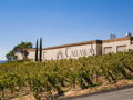 One-Year Bi-Monthly Wine Membership From Callaway Winery