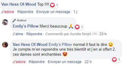 emily's pillow avis