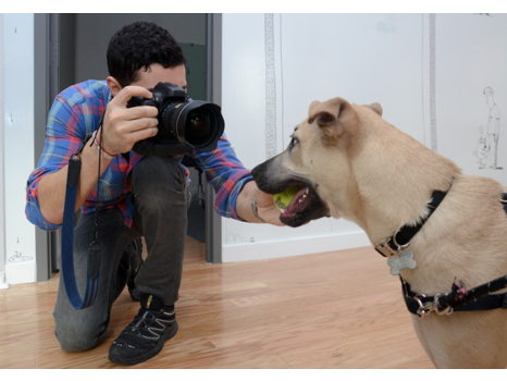 The Dogist!  Your Pup's Own Shoot