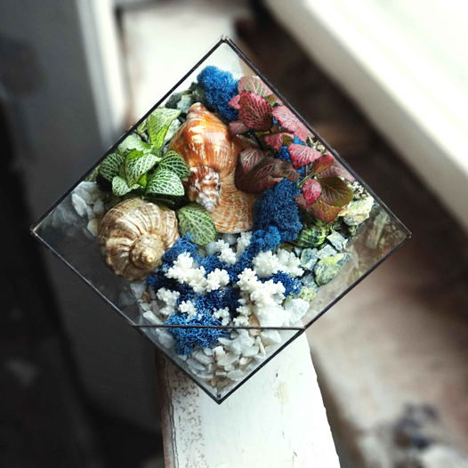 """Геометрический флорариум """"LIVING OCEAN COLOUR"""""""