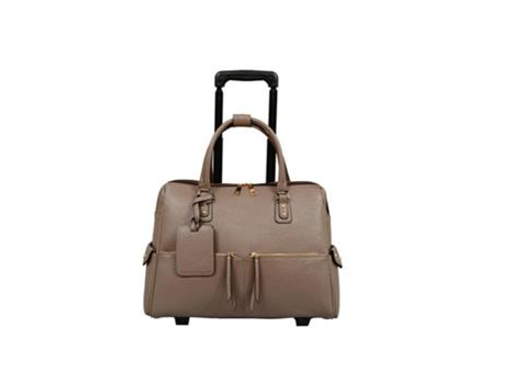Business/Carry-On Roller Bag