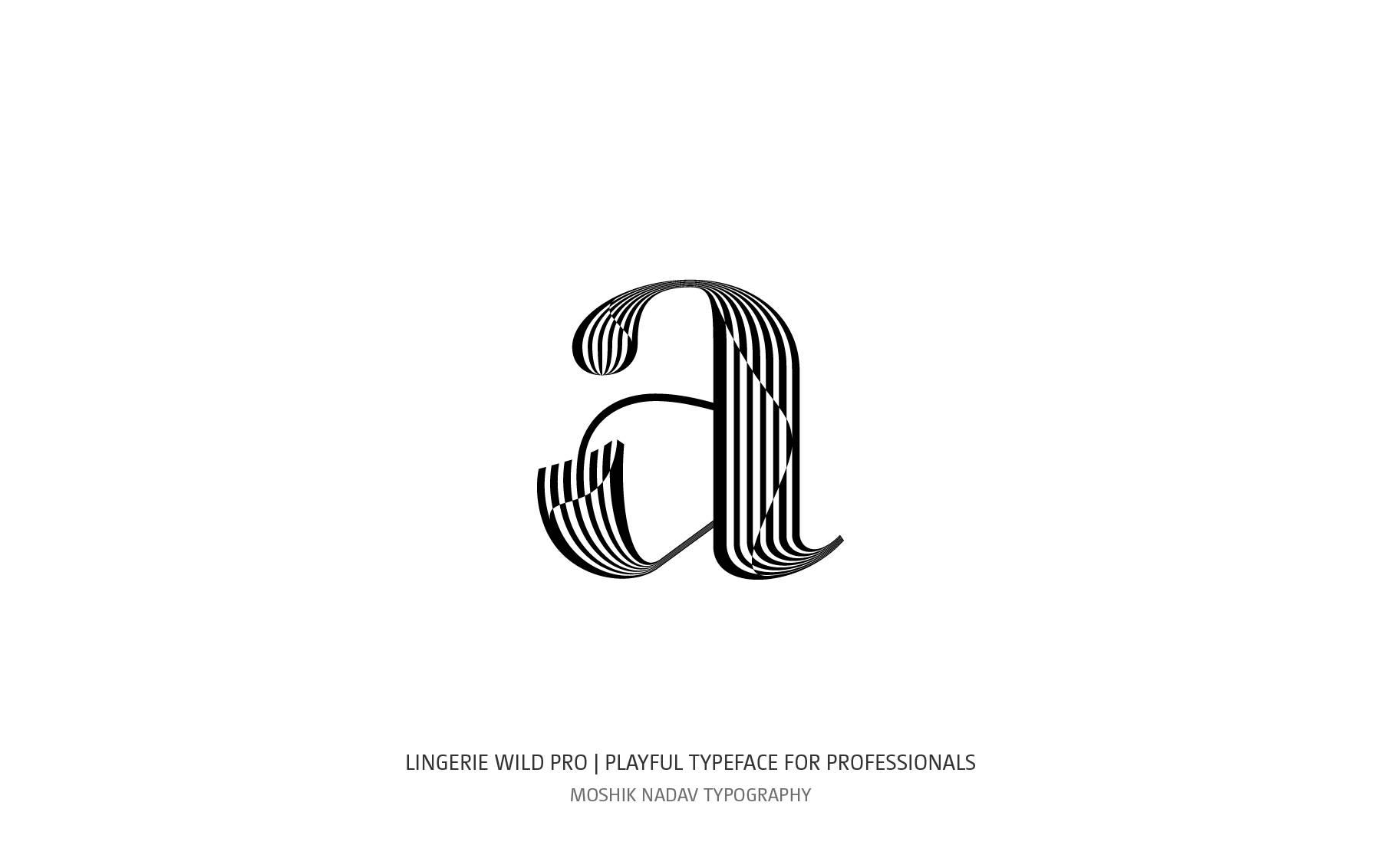 BW new font by Moshik Nadav Typography