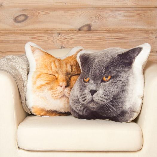Комплект из двух подушек «Коты»