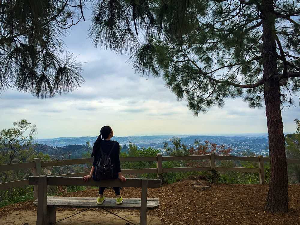 Griffith Park hike Berline Forest