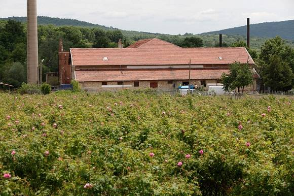 Visagenics Essential Oils Distillery in Rose Valley, Bulgaria