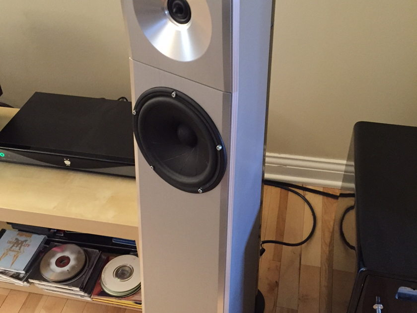 YG Acoustics Carmel in Silver Excellent Condition
