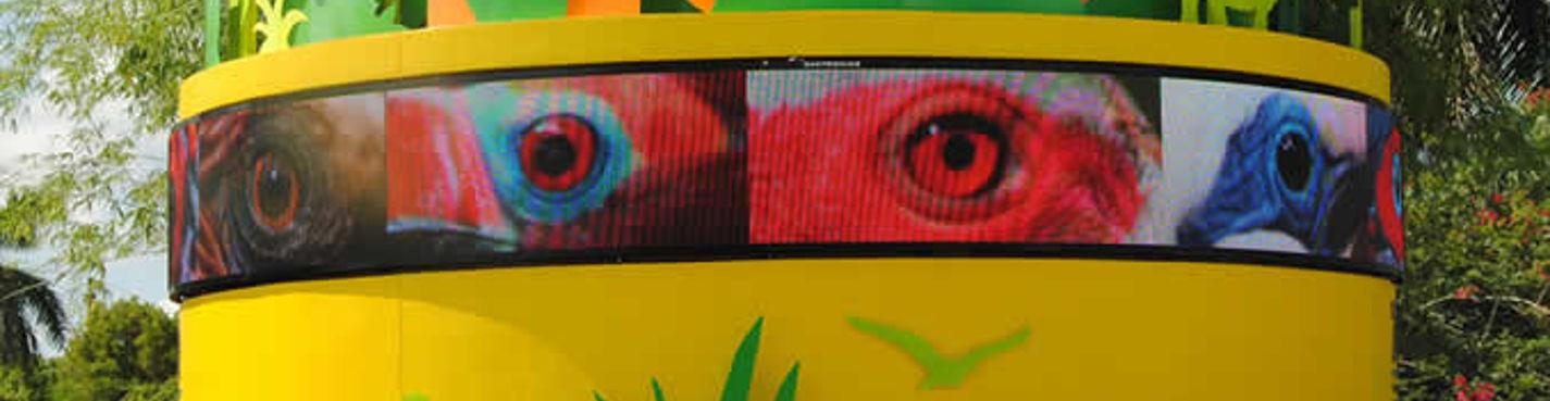 Зоопарк Майами (Miami Zoo)