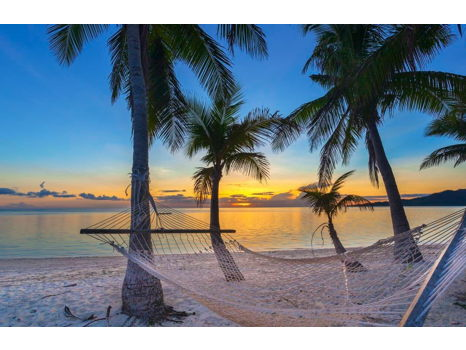 Discover Pure Pacific Paradise in Fiji