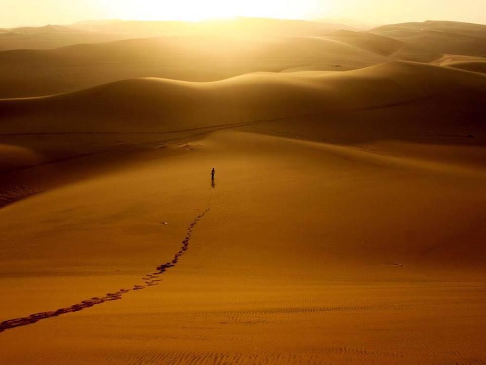 desert wow.jpg