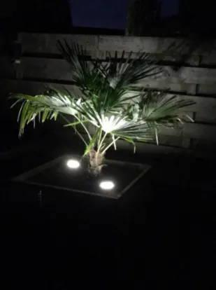 LED-garden-light-solar-exterior-led-tanche-led-resistant-water-magicled-testimonial-1
