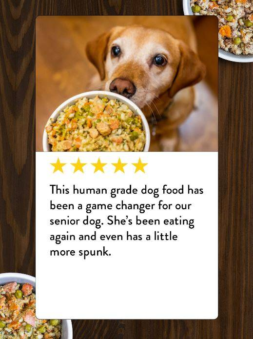 A review from an owner praising the benefits of Portland Pet Food's human-grade dog food toppers for senior dogs.