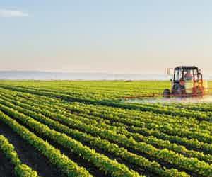 Reviving Agriculture In Nigeria