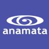 Anamata logo