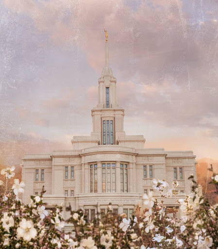 Payson Utah Temple standing amod white flowers.