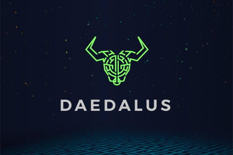 Daedalus: from launch to Flight and beyond...