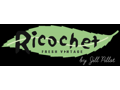 Ricochet Wearable Art Academy
