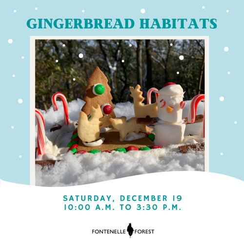 Picture of Make a festive gingerbread habitat in this fun, family holiday event.