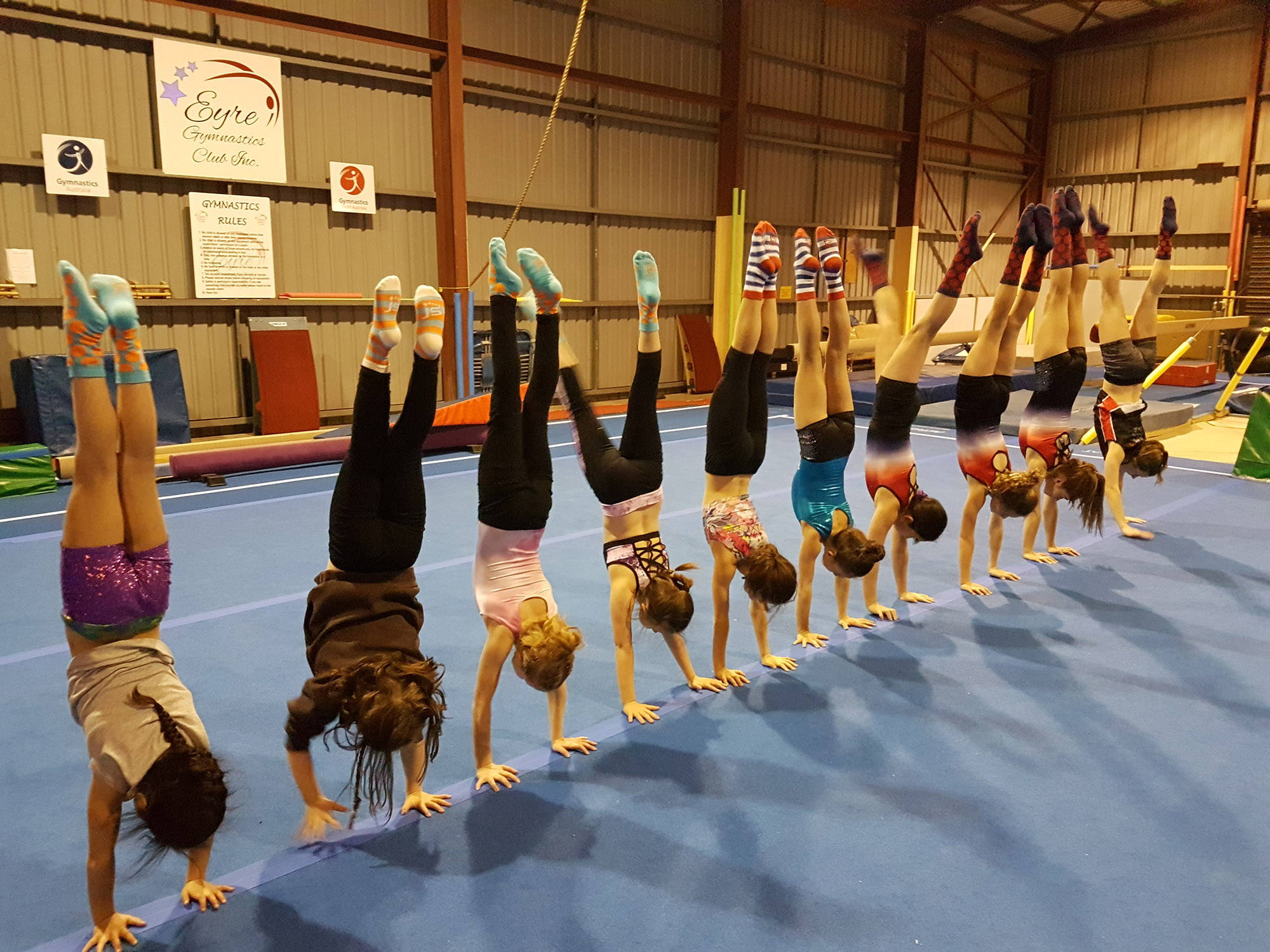 The profitable fundraising idea for sports team used by Eyre Gymnastics club