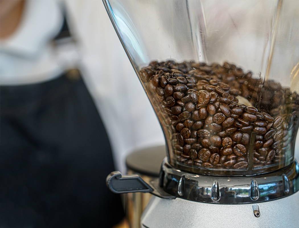 filicori zecchini caffe coffee biologico fairtrade espresso drip filtro v60 chemex capsule cialde arabica robusta modbar bologna centenario formazione corsi sca laboratorio te cioccolato 1919 2019