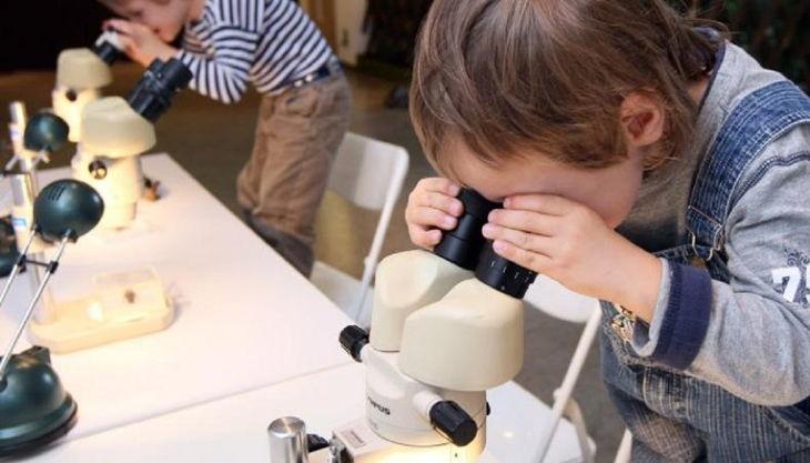 stiftung stadtmuseum kinder am mikroskop