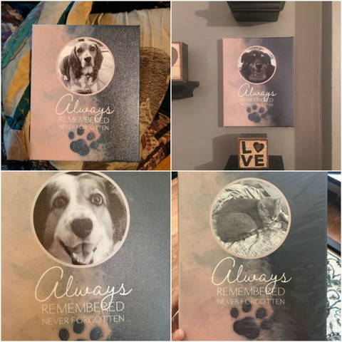 """Always Remembered, Never Forgotten"", Dog Memorial Customer Photos"