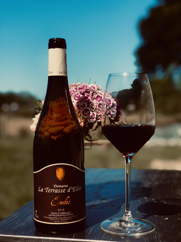 la terrasse d'élise, xavier braujou, enclos, mourvèdre, france, vin nature, rawwine, organic wine, vin bio, vin sans intrants, bistro brute, vin rouge, vin blanc, rouge, blanc, nature, vin propre, vigneron, vigneron indépendant, domaine bio, biodynamie, vigneron nature, cave vin naturel, cave vin, caviste, vin biodynamique, bistro brute