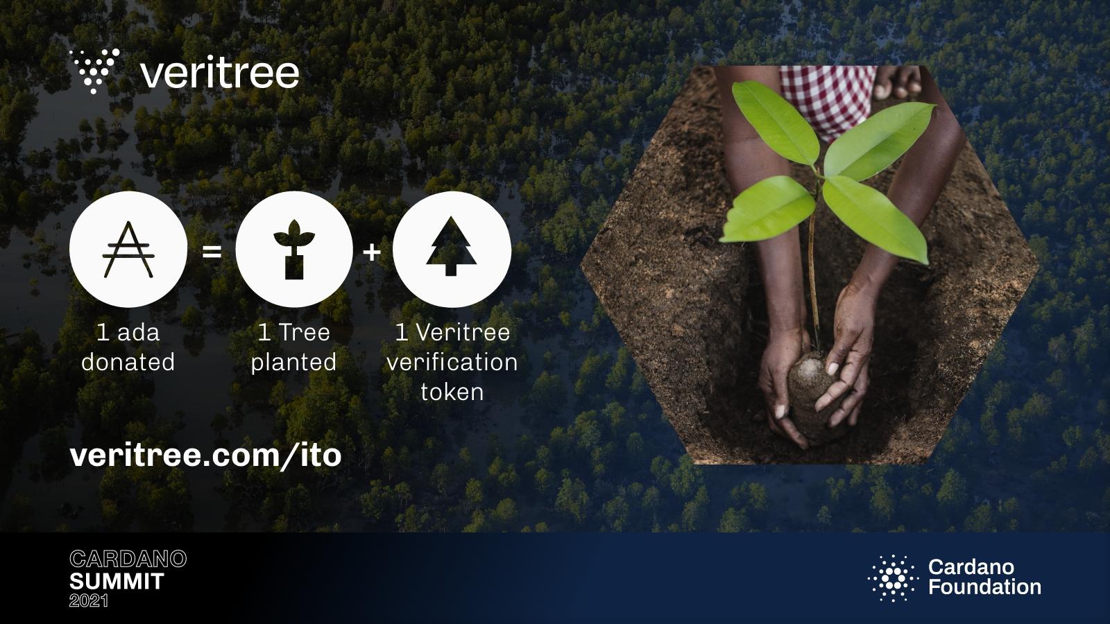 Veritree 1 ada donated equals 1 tree planted + 1 Veritree verification token