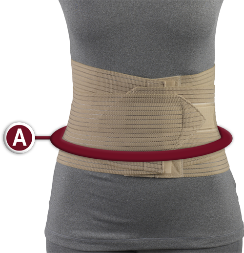 Lumbosacral Support Measurement Location