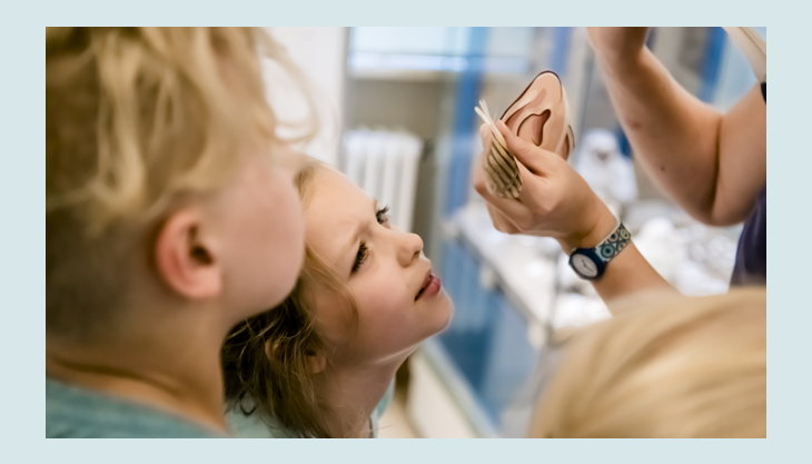 naturkundemuseum potsdam kindergeburtstag vogel federn