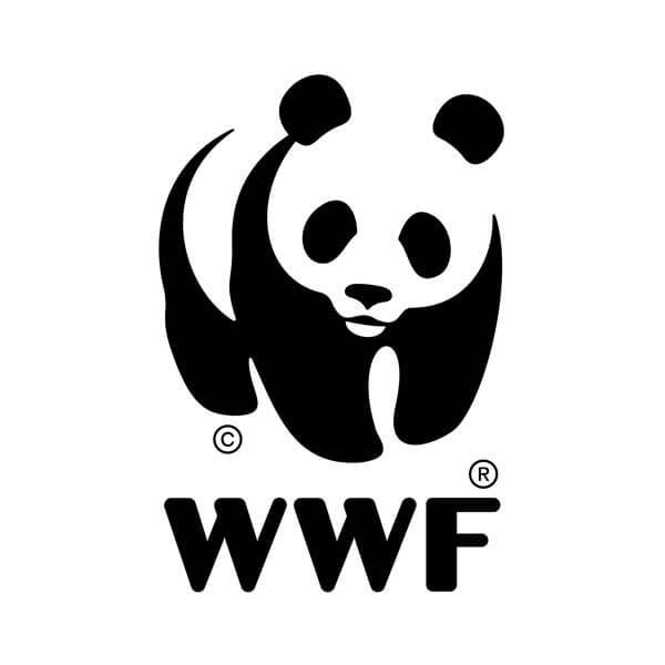 ROOM IN A BOX - Thursdays for Future Spende an WWF