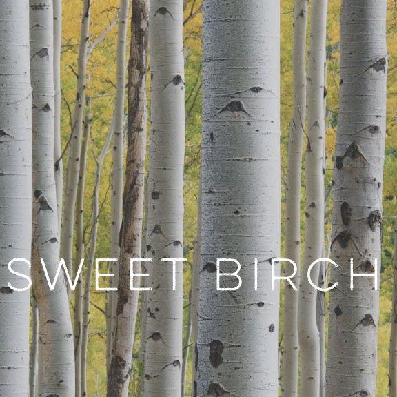 Sweet Birch Lard Soap