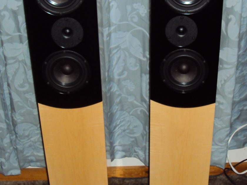 Salk SongTower QWT Standard Curly Maple