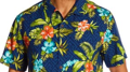 HDRPCA August Hawaiian Dinner 8/21/2019 at 6pm