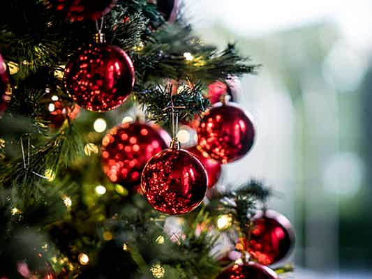 Riccione - Unique Christmas trees – 3 fresh ideas for positioning your tree this Christmas