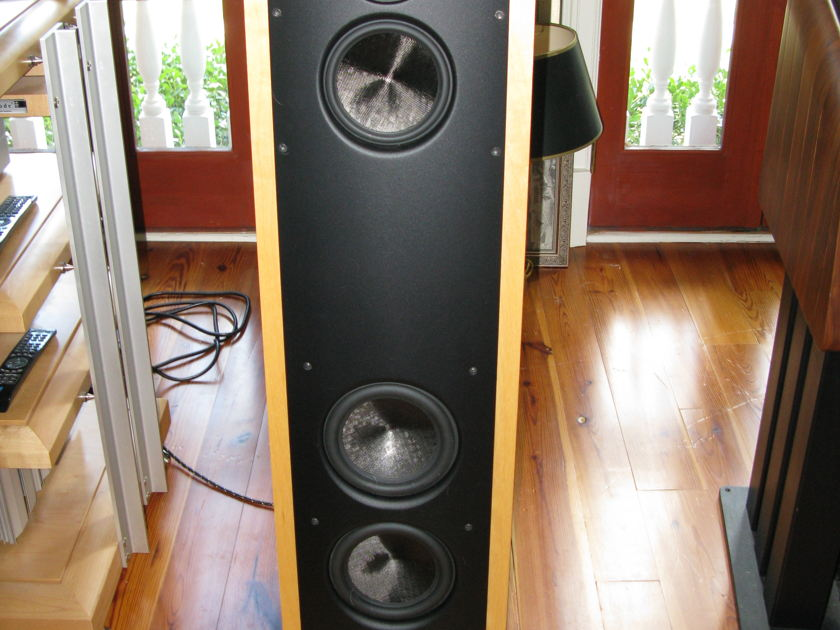 Magico V 3 very nice pair price lowered, LAST TIME!