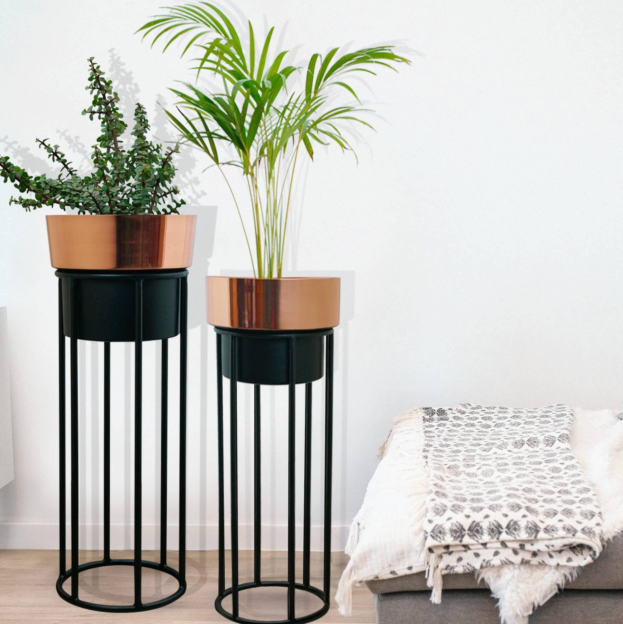 planters indoor plants large