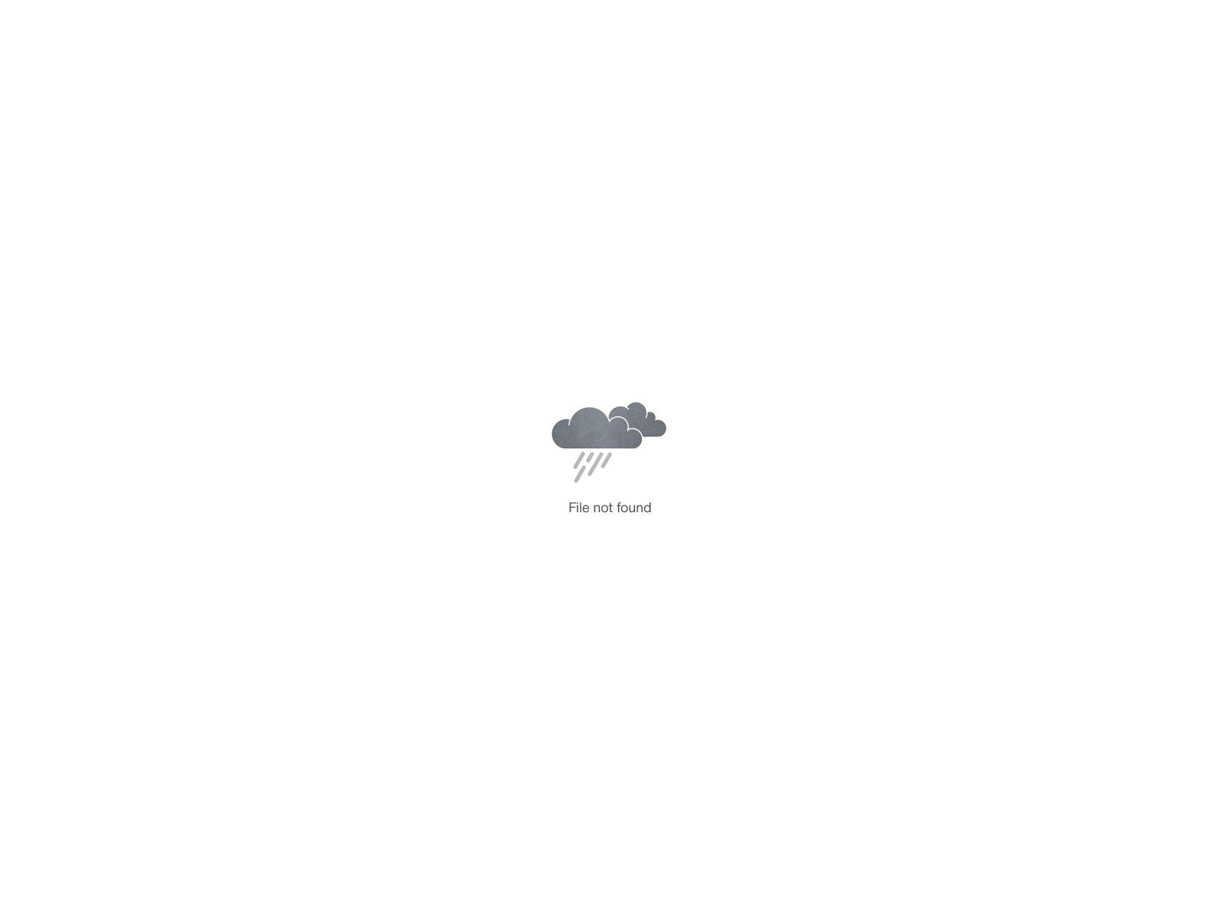 Vorschaubild zu Basel Hack 2017