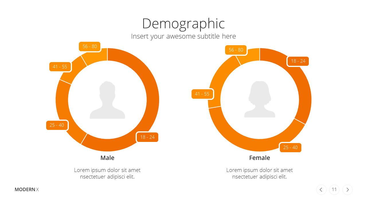 Modern X Presentation Template Business Plan Demographics