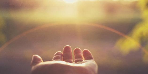 Sun in palm.jpg