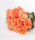 BF Dozen Orange Roses