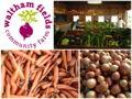 September CSA Share from Waltham Fields Community Farm