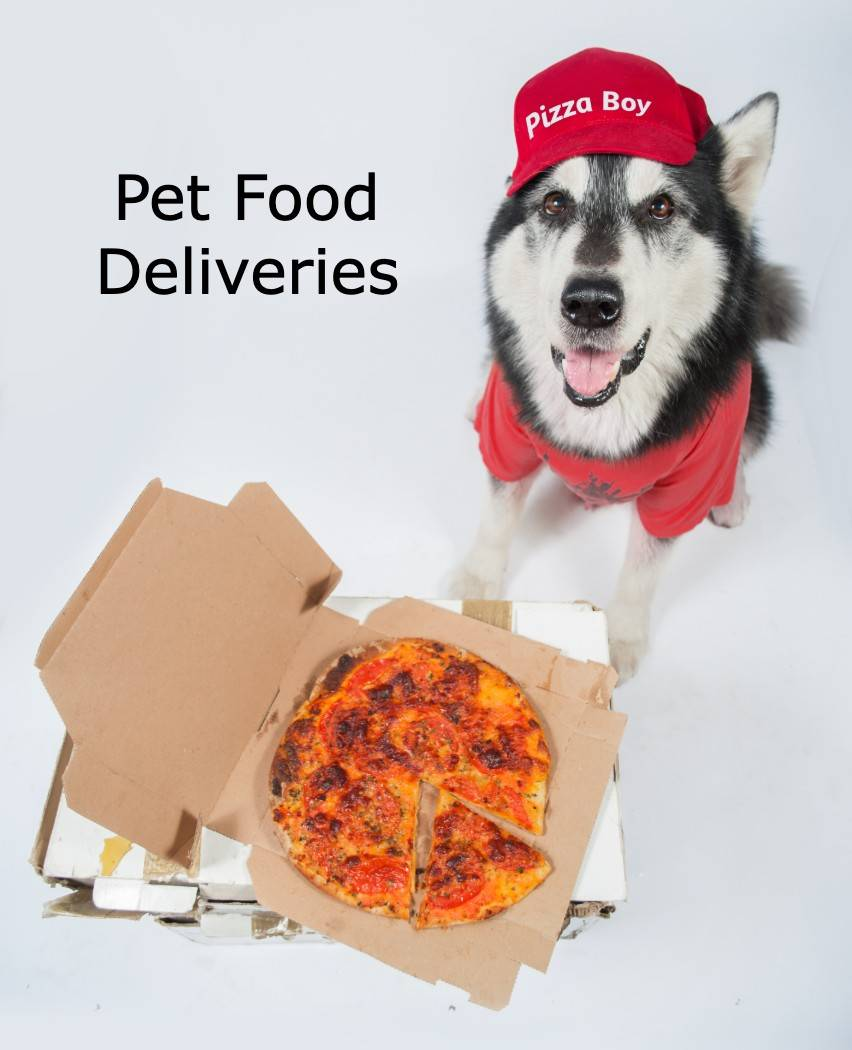Dog Food Deliveries