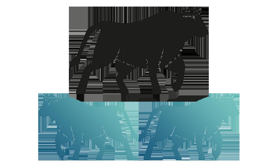Symbol Herdenstärke