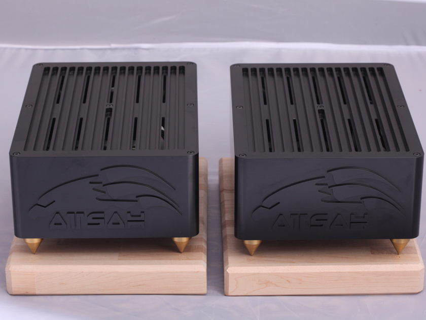 Acoustic Imagery Atsah NC-1200 Custom monoblocks