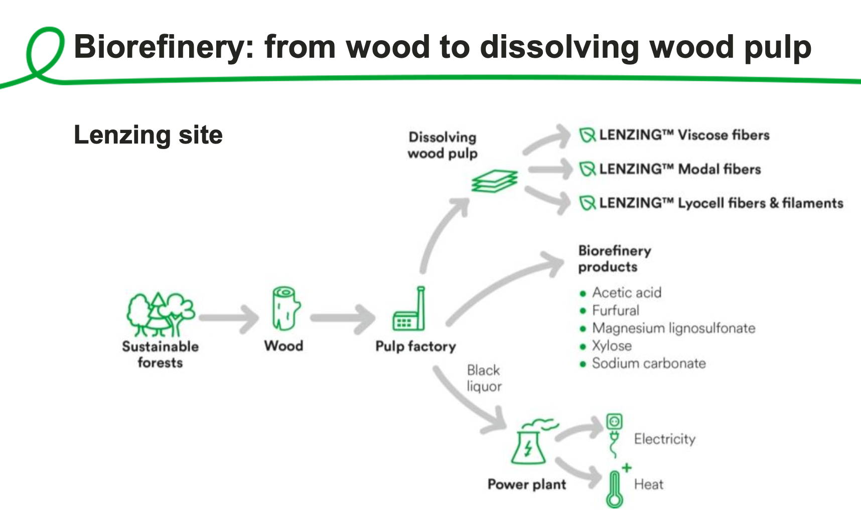 Biorefinery- from wood to fibers